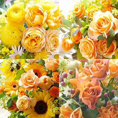 黄色オレンジ系